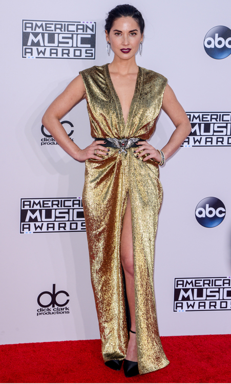Olivia Munn In Lanvin – 2014 American Music Awards