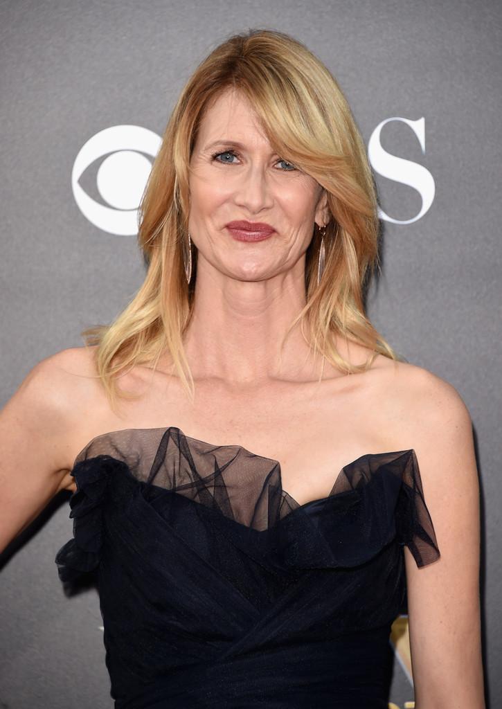 Laura-Dern-18th-Annual-Hollywood-Film-Awards