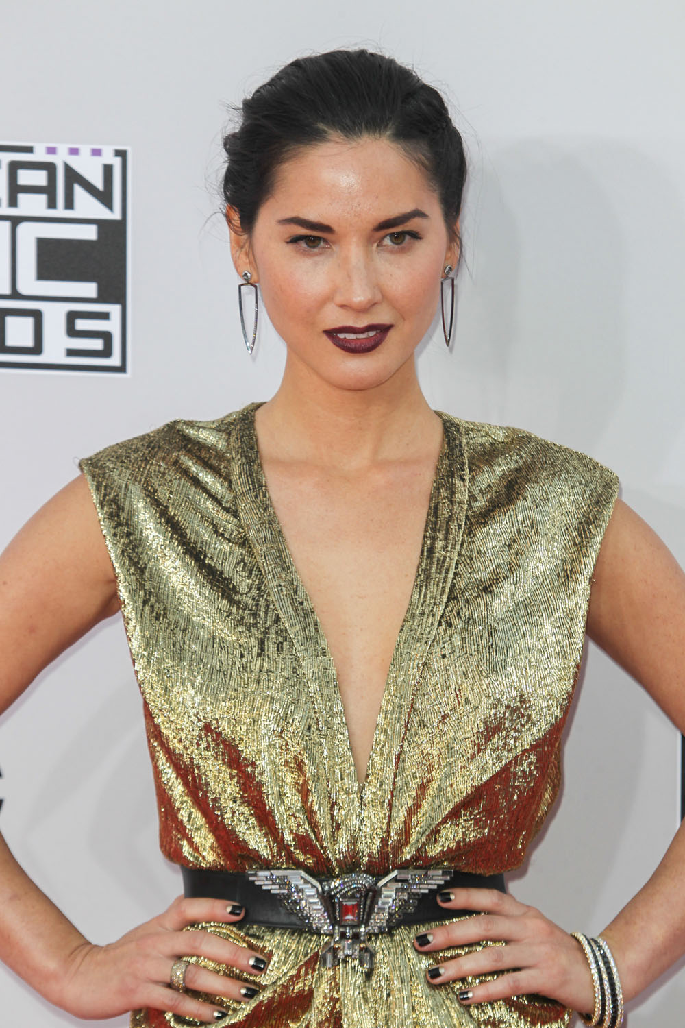 Olivia-Munn-in-Lanvin-2014-American-Music-Awards-.jpg