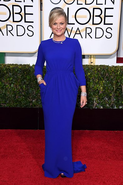 Amy-Poehler-in-Stella-McCartney-2015-Golden-Globe-Awards-.jpg