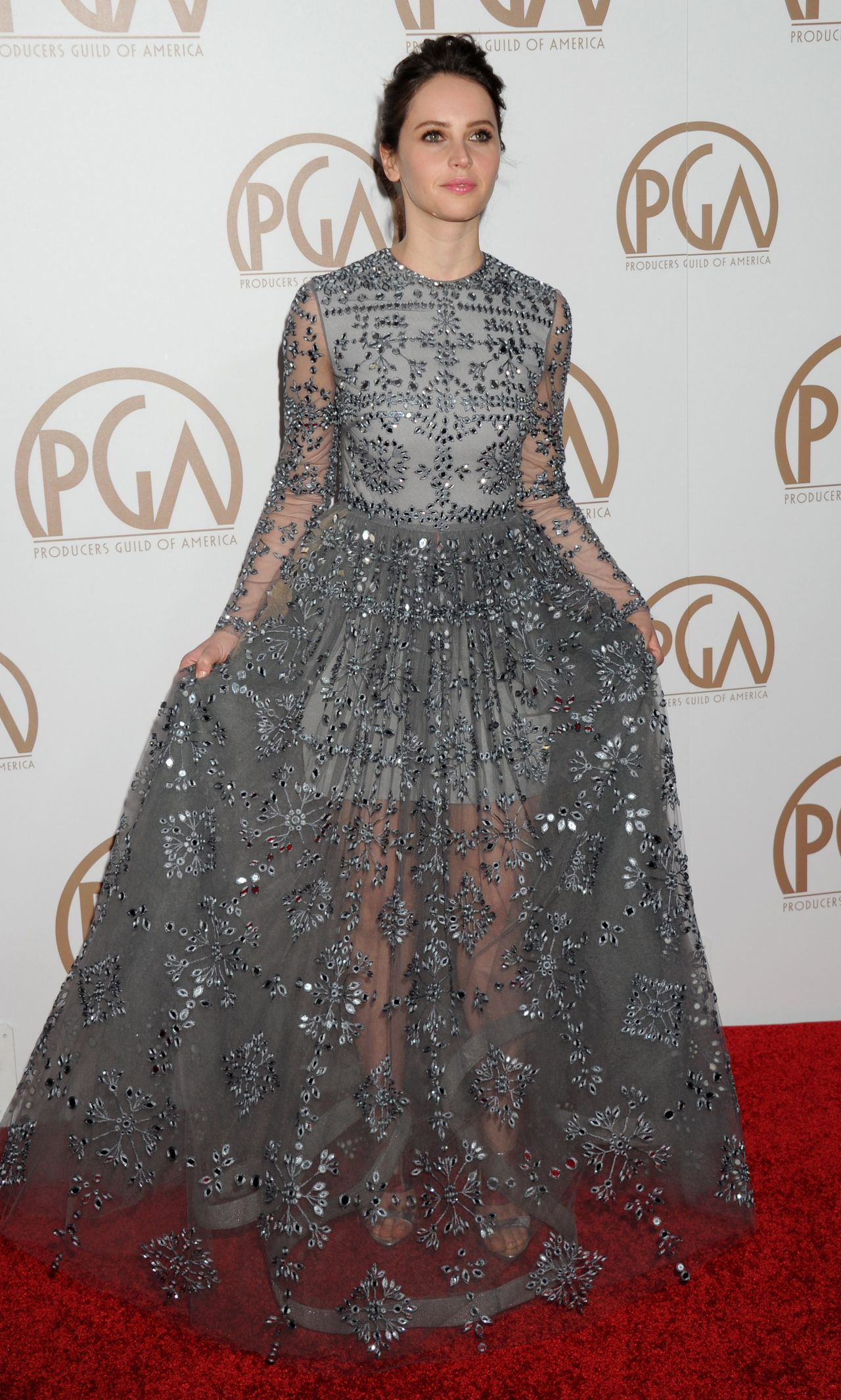 felicity-jones-2015-producers-guild-awards-in-los-angeles_1