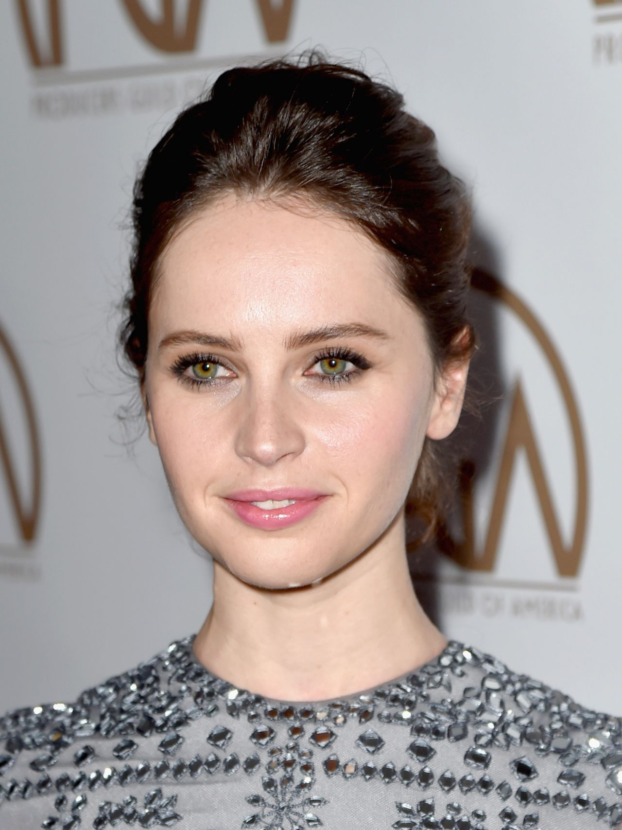 felicity-jones-2015-producers-guild-awards-in-los-angeles_2