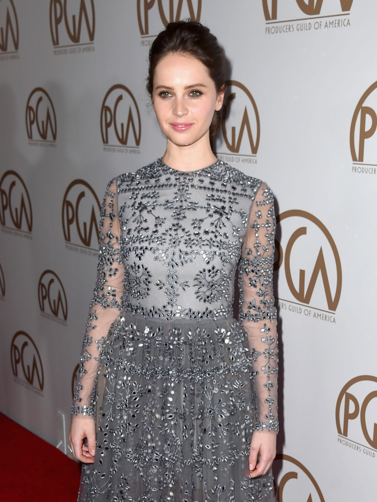 felicity-jones-2015-producers-guild-awards-in-los-angeles_7