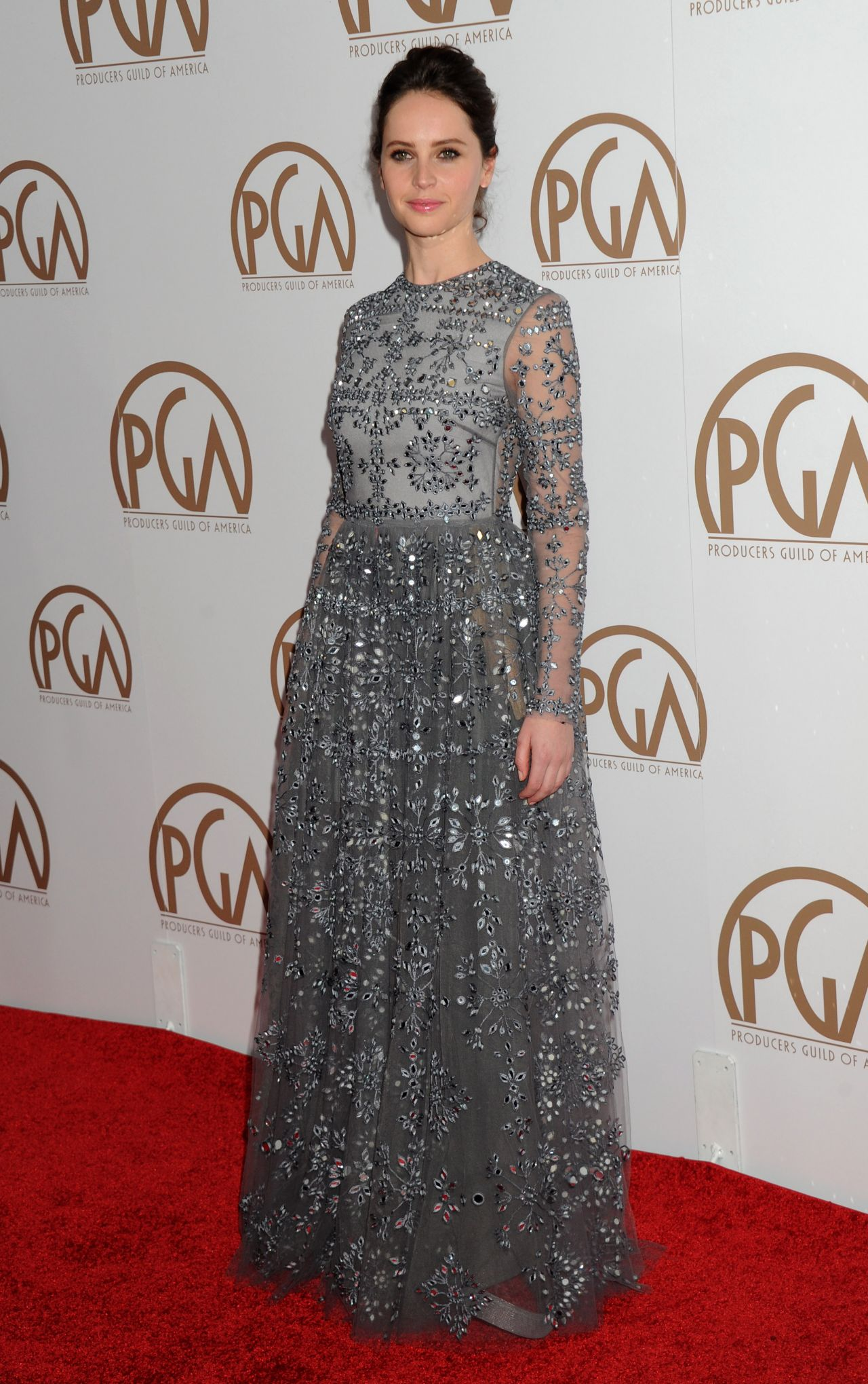 felicity-jones-2015-producers-guild-awards-in-los-angeles_8