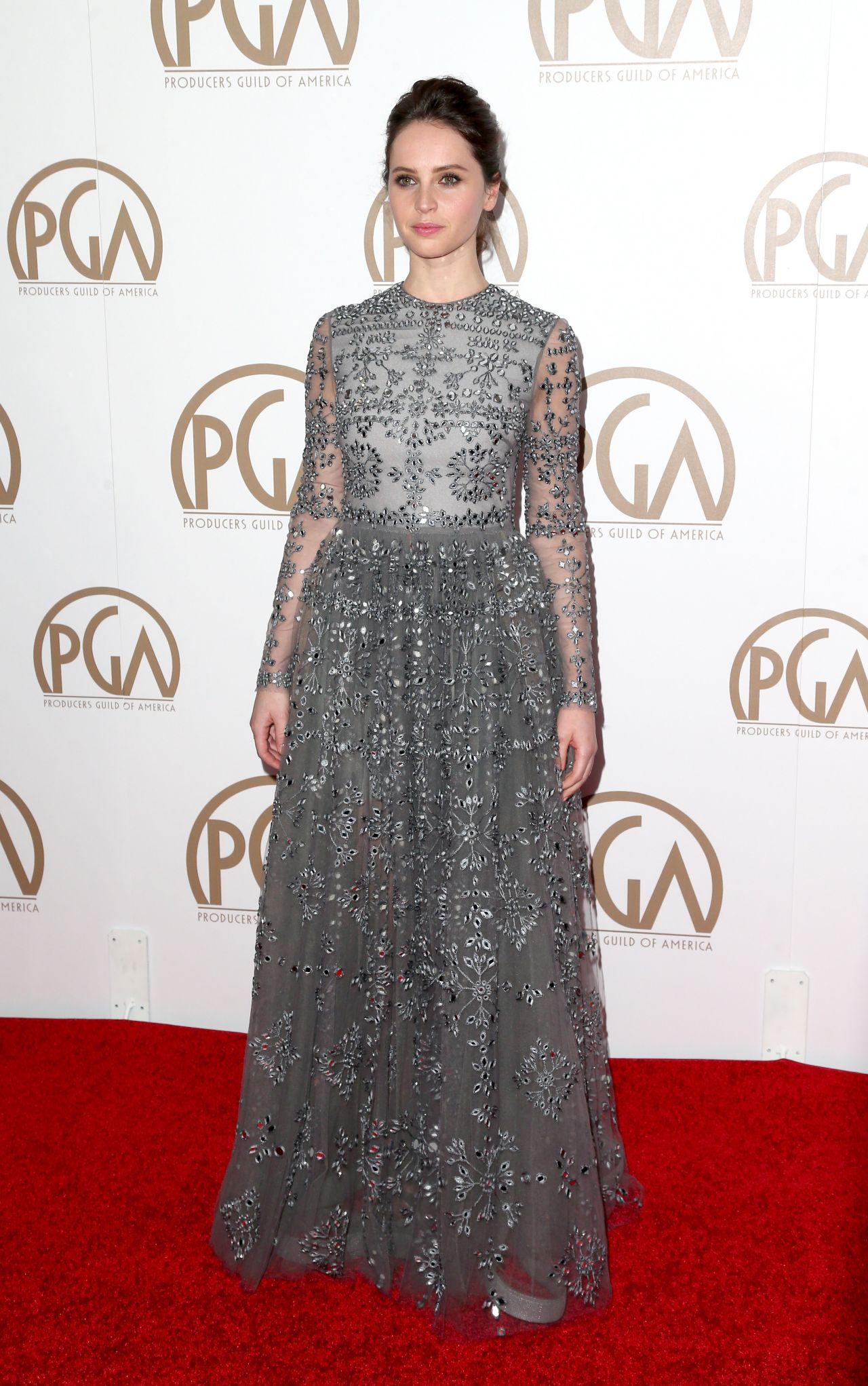 felicity-jones-2015-producers-guild-awards-in-los-angeles_9
