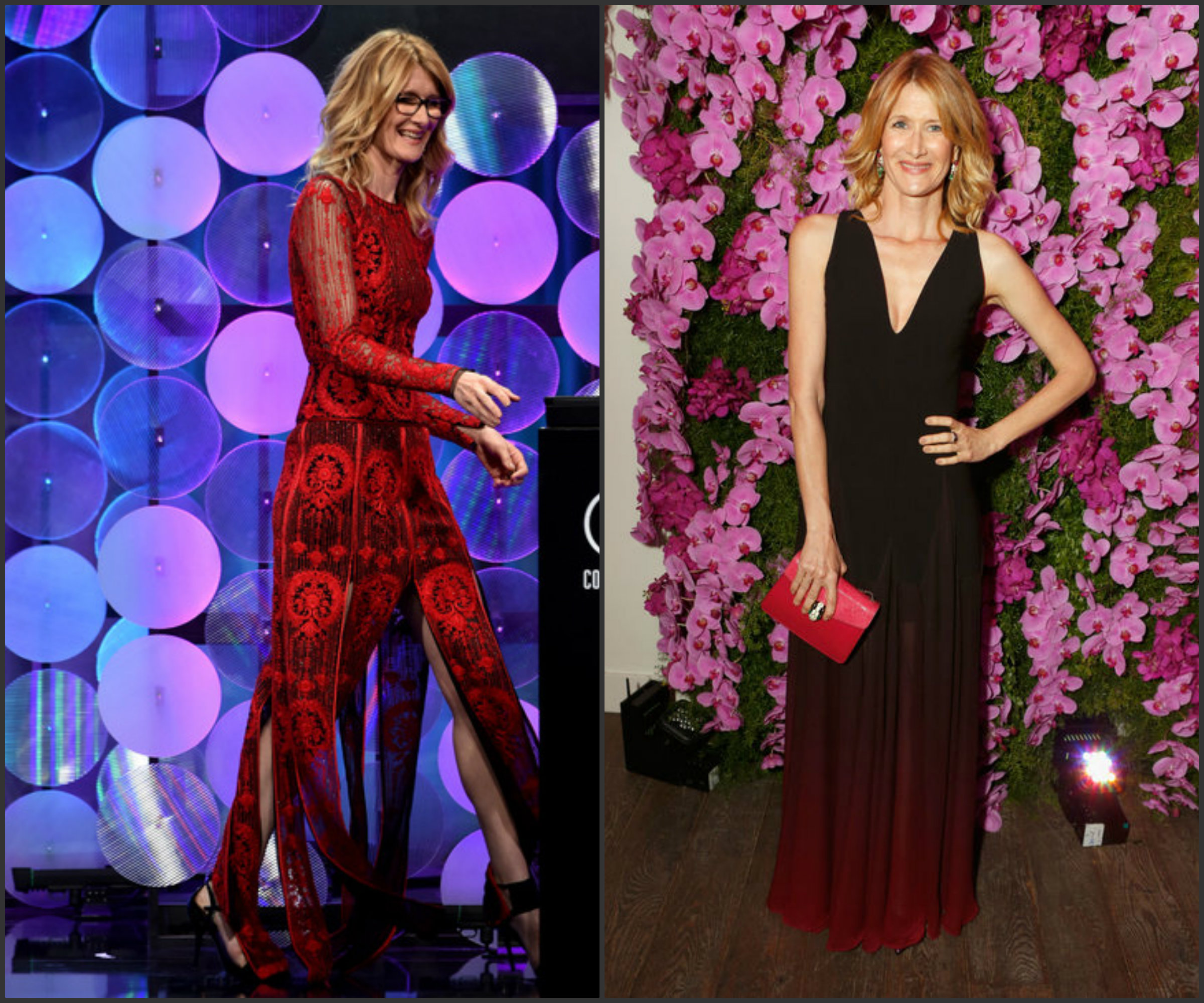 Laura-Dern-In-Naeem-Khan-Halston-Heritage-17th-Costume-Designers-Guild-Awards-BVLGARI-Pre-Oscar-Event