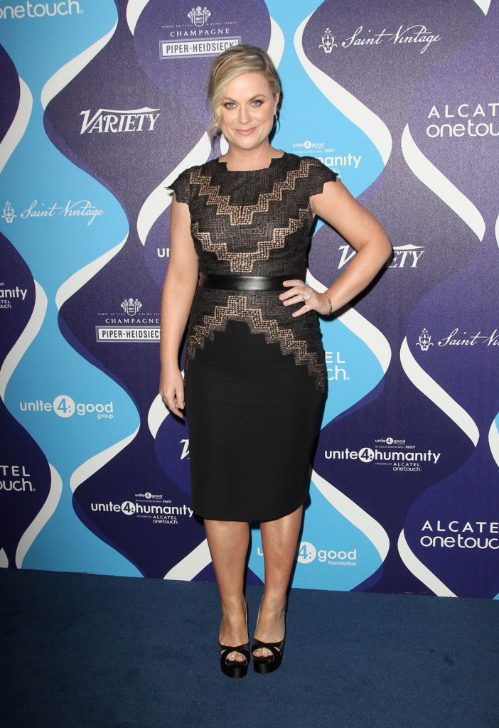 Amy -Poehler-2nd-annual-unite4humanity-event