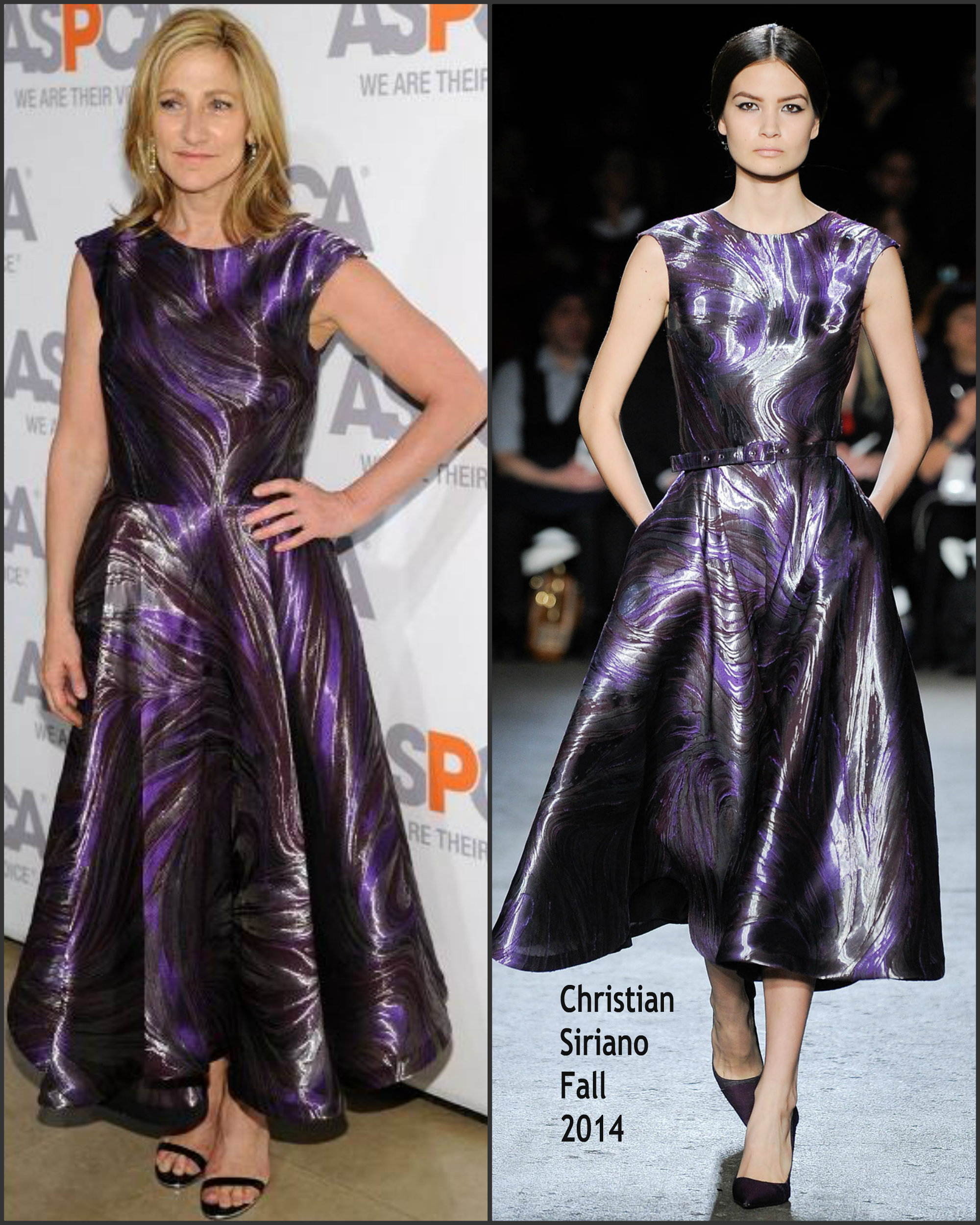 Edie-Falco-in-Christian-Siriano-at-Aspcas-18th-Annual-Bergh-Ball