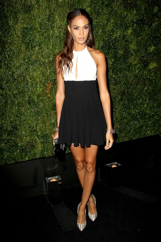 Joan-Smalls--Chanel-Dinner-2015-