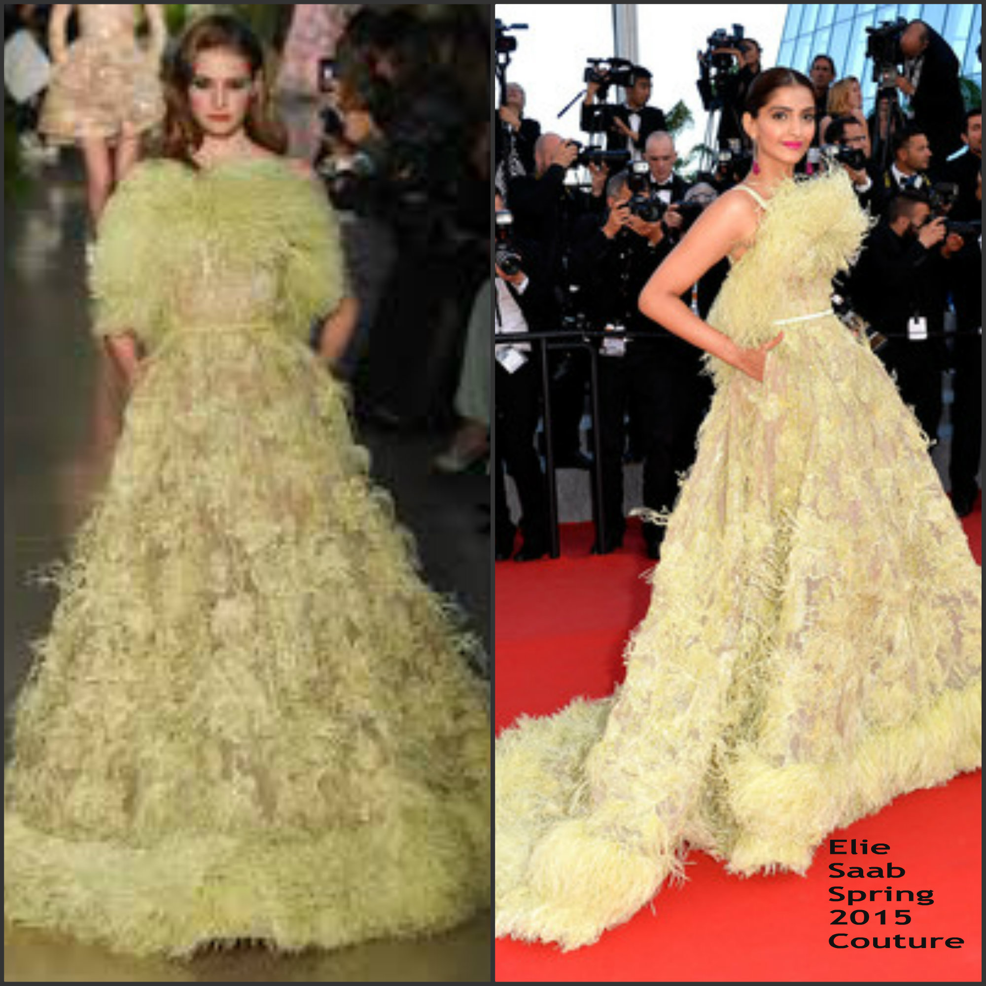 sonam-kapoor-in-elie-saab-couture-inside-out-cannes-film-festival-premiere (1)