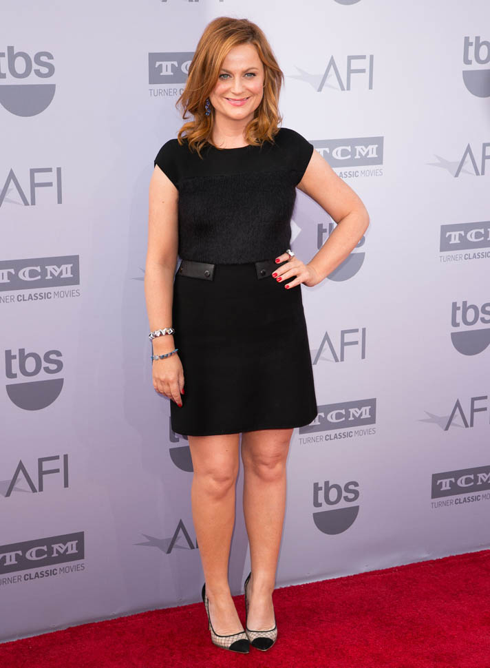 Amy -Poehler-2015-afi-life-achievement-award-gala