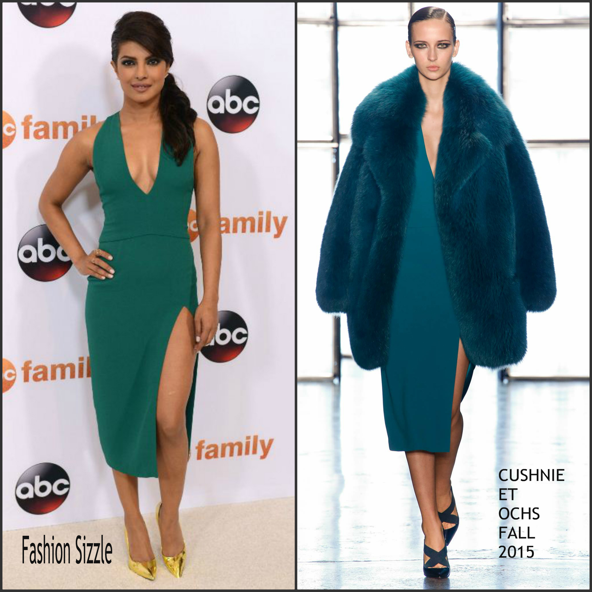 priyanka-chopra-in-cushnie-et-ochs-disney-abc-2015-summer-tga-tour-photocall