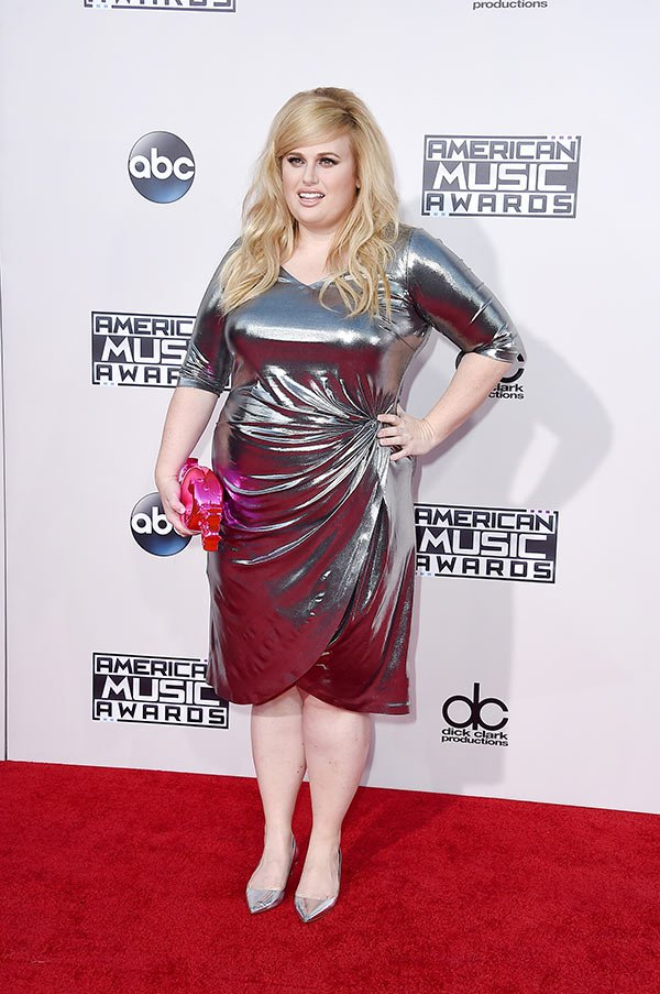 rebel-wilson-amas-best-dressed-american-music-awards-2015
