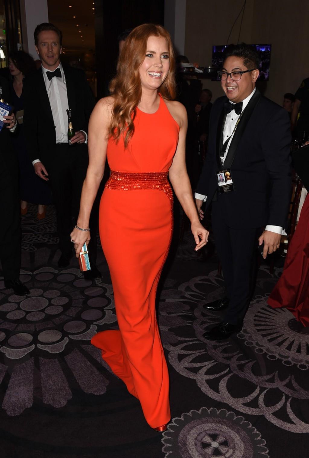 Amy-Adams-Versace-dress-2016-Golden-Globe-Awards-1024x1513