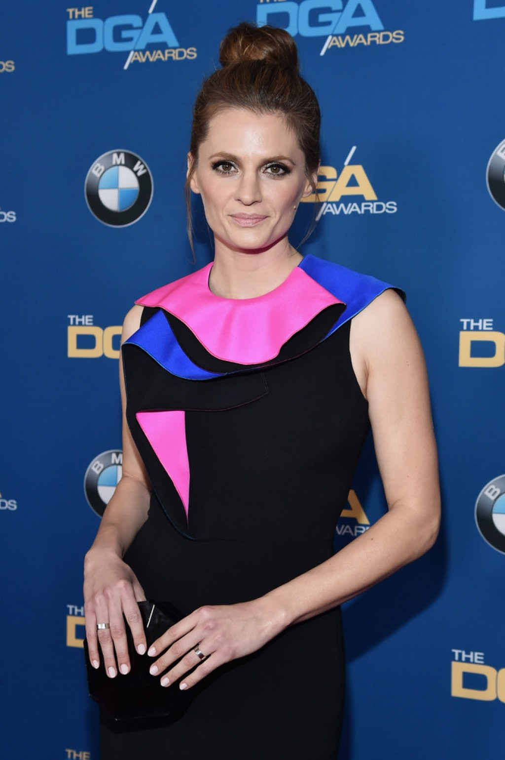 stana-katic-2016-dga-makeup-1024x1539