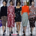 Christian Dior  Fall 2016 Ready To Wear  Collection