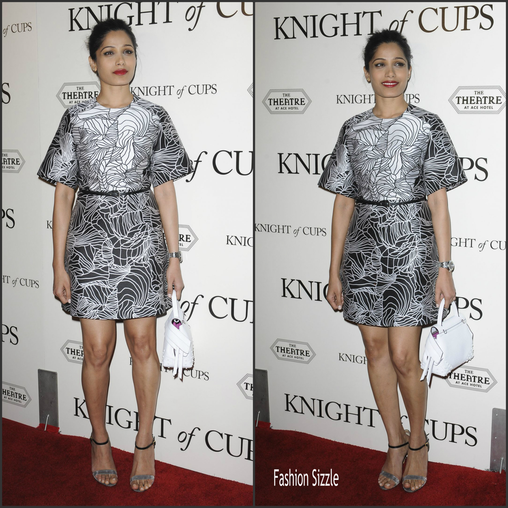 freida-pinto-in-elie-saab-knight-of-cups-la-premiere