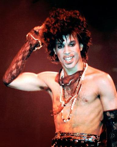 Prince-hair
