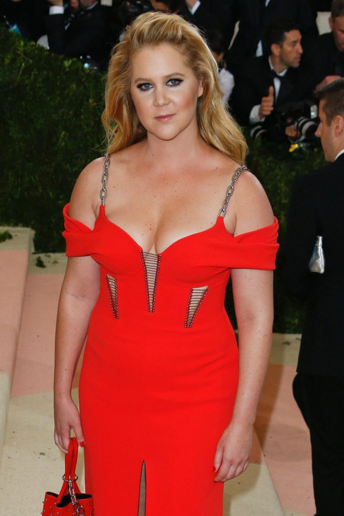 Amy-Schumer-Met-Gala-2016-Red-Carpet-Fashion-Alexander-Wang-