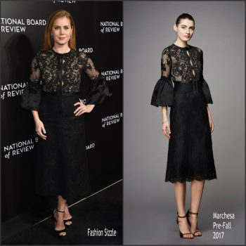 amy-adams-in-marchesa-at-the-national-board-of-review-gala-in-new-york