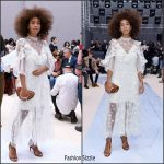 Solange Knowles  In Chloe – Chloe Fall 2017 Paris Fashion Week Show