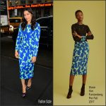 Freida Pinto In Diane von Furstenberg  -The Today Show