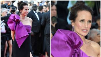 andie-macdowell-in-roberto-cavalli-couture-the-meyerowitz-stories-cannes-film-festival-premiere