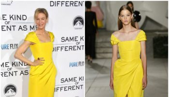 renee-zellweger-in-carolina-herrera-same-kind-of-different-as-me-la-premiere