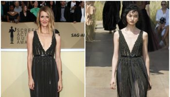 laura-dern-in-christian-dior-couture-2018-sag-awards