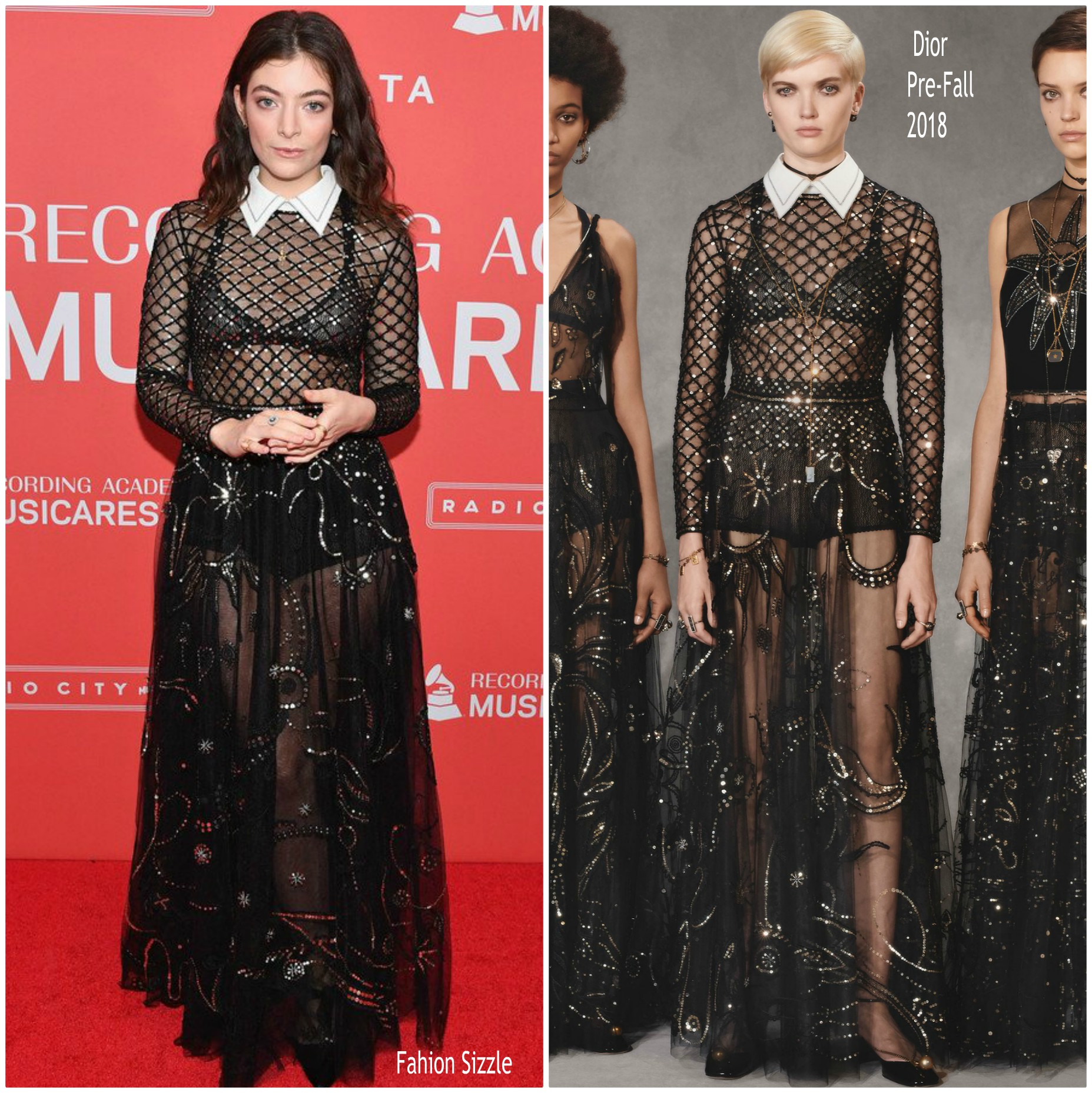 lorde-in-christian-dior-2018-musicares-gala-in-new-york