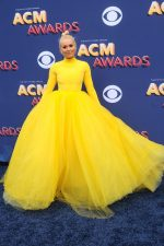 Lindsey Vonn In Christian Siriano  @ 2018 ACM Awards