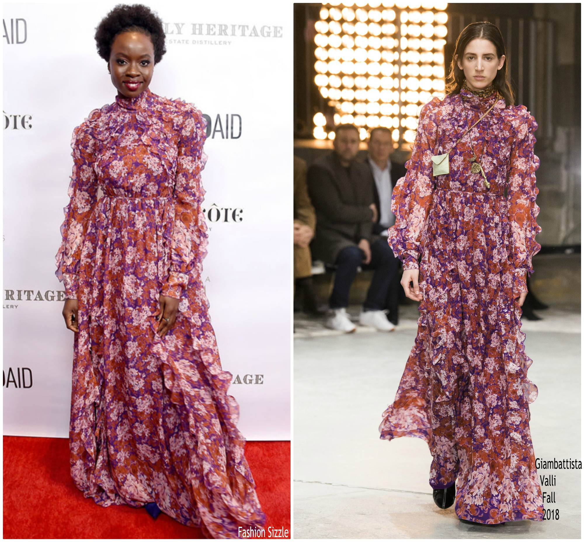 danai-gurira-in-giambattista-valli-an-evening-in-china-with-wild-aid