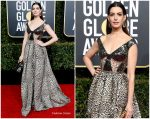 Anne Hathaway In Elie Saab  @  2019 Golden Globe Awards