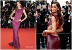 "Izabel Goulart  In Etro Couture @  ""The Dead Don't Die"" Cannes Film Festival Premiere"