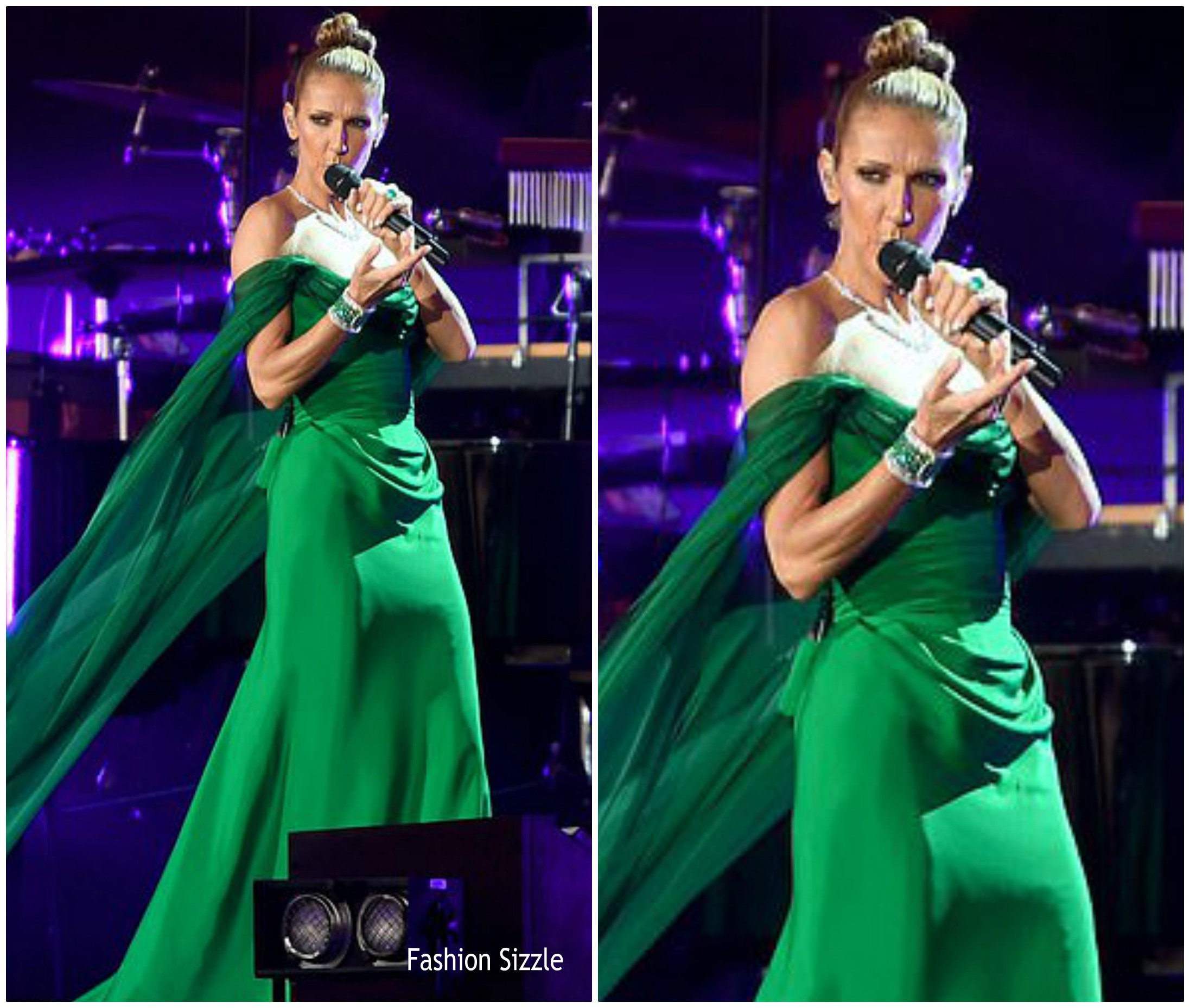 celine dion -in vivienne-westwood-couture-british0summer0time-hyde-park-festival