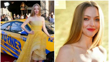 amanda-seyfried-in-oscar-de-la-renta-the-art-of-racing-in-the-rain-la-premiere