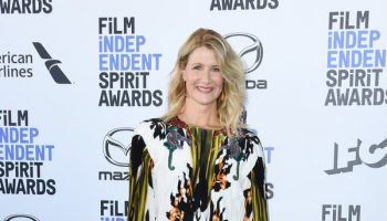 laura-dern-in-valentino-2020-film-independent-spirit-awards