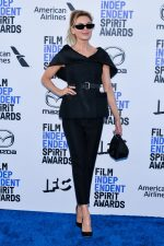 Renee Zellweger In Christian Dior @  2020 Film Independent Spirit Awards