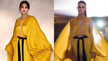 sonam-kapoor-wore-stephane-rolland-promoting-the-film-ak-vs-ak