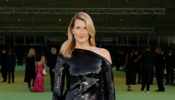 laura-dern-wore-roland-mouret-the-opening-of-the-academy-museum-of-motion-pictures-in-los-angeles